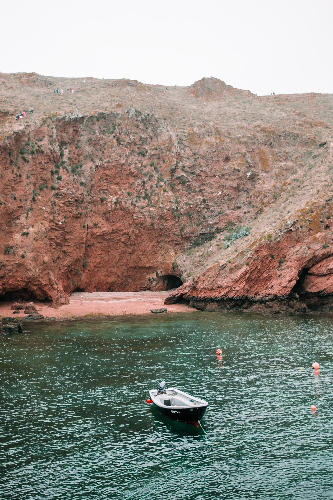 The coastline of the Berlenga Islands