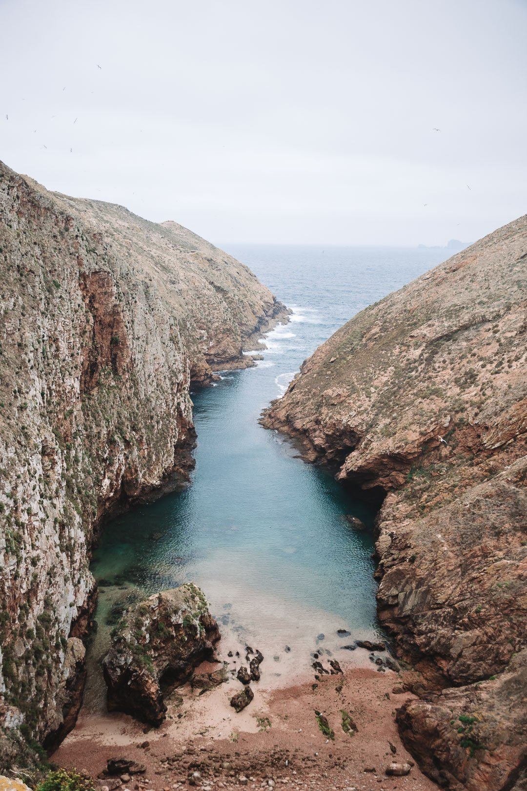 A beautiful cover on the north side of Berlenga Grande