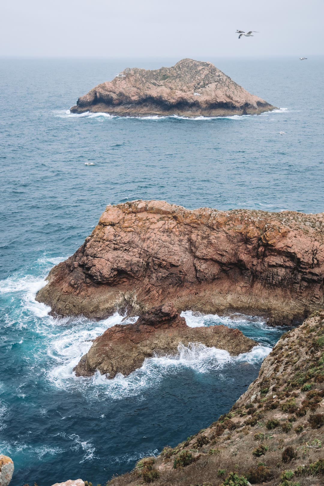 The dramatic coastline of the Berlengas Islands on Berlenga Grande
