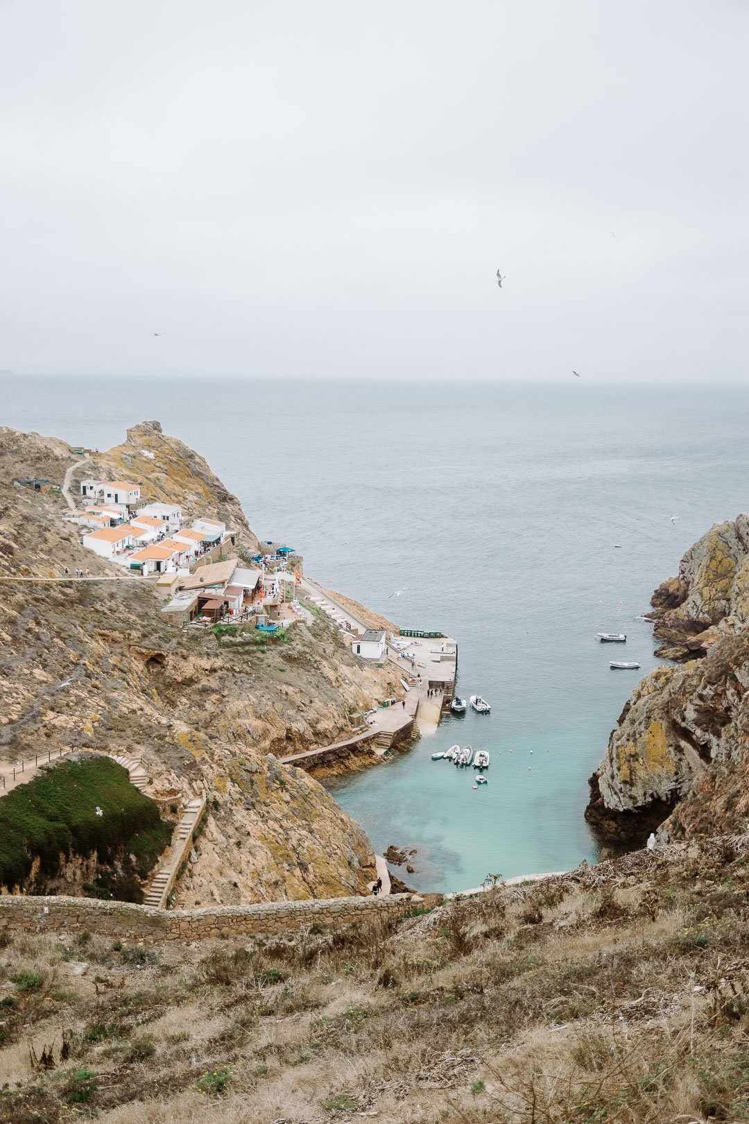 The view from the camping site looking down on the Berlenga Grande fishing harbour and Berlenga beach