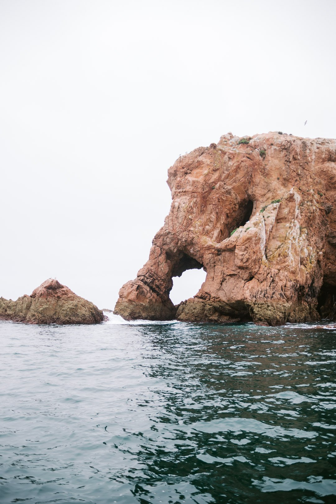 The elephant rock viewed from the small boat tour around Berlenga Grande in the Berlenga Islands Portugal